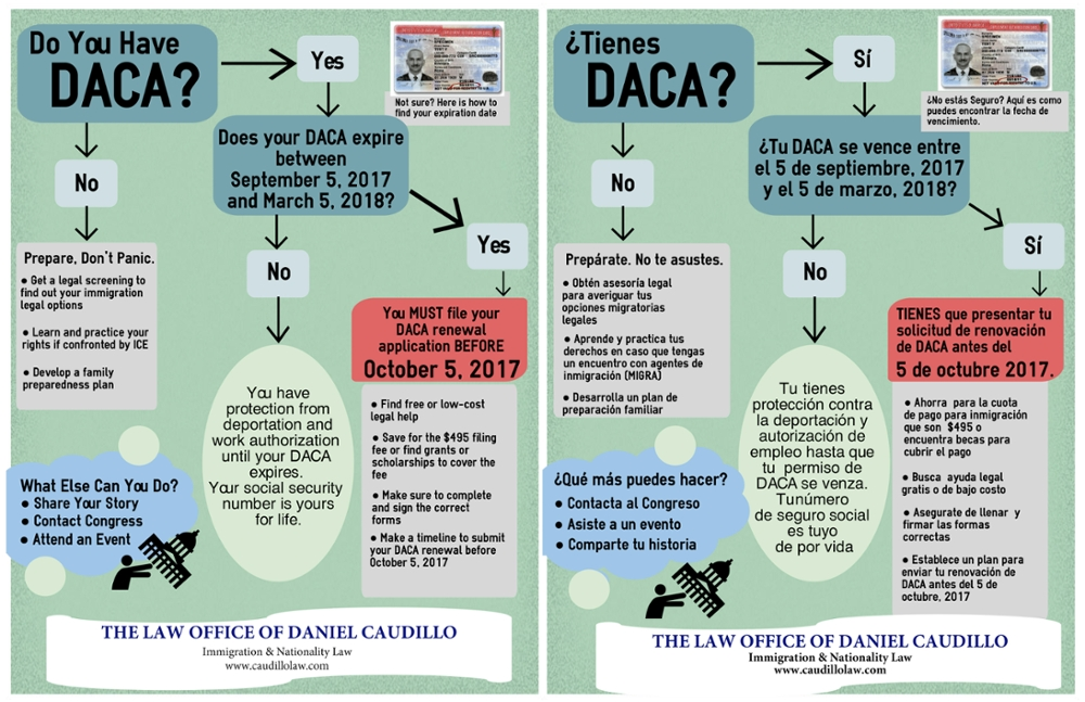 DC Law DACA Renewal Infographic