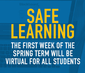 Remote Learning Spring 2021