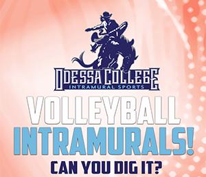 Volleyball Intramurals
