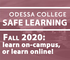 Safe Learning Fall 2020
